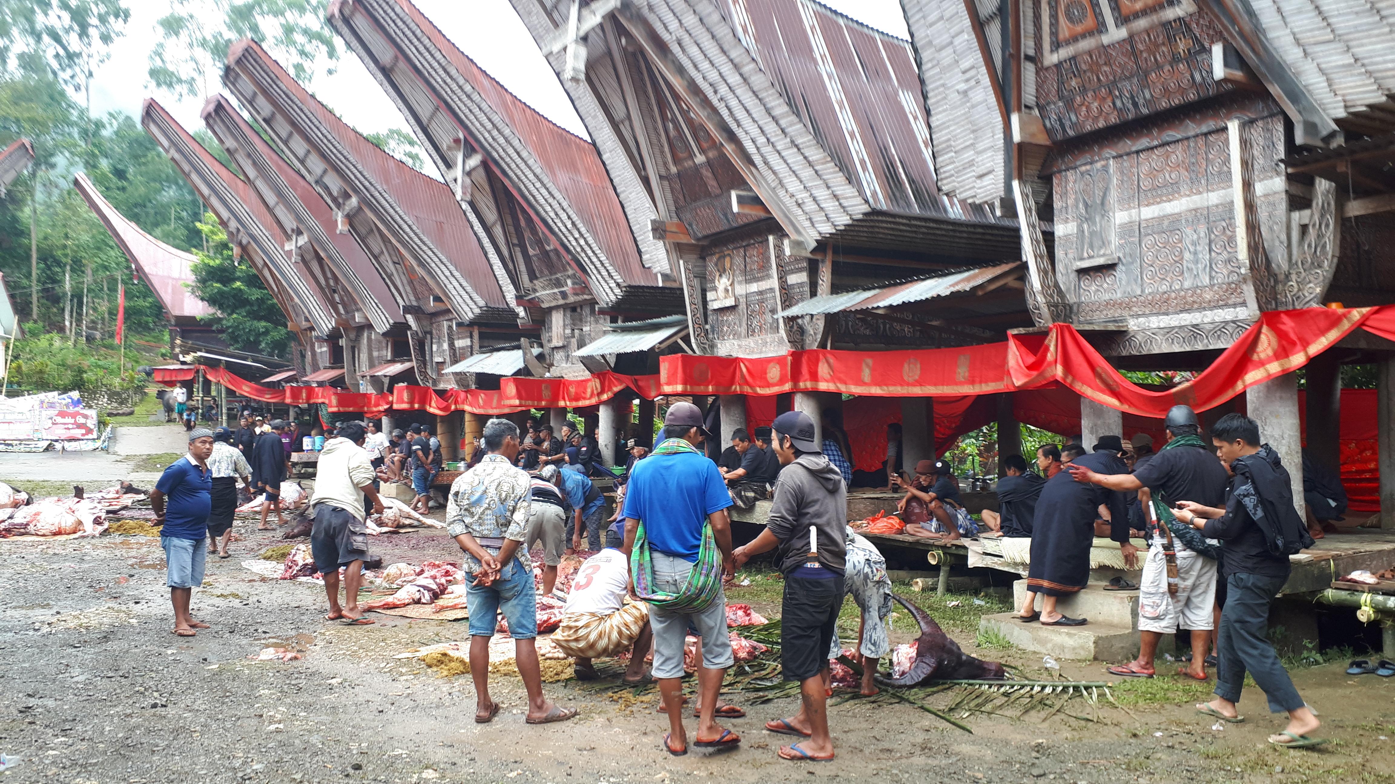 Rendez-vous en Sulawesi